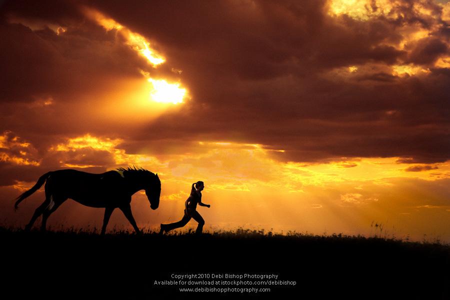 Horse Following Woman