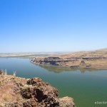 Native Plant Hike - Wallula Gap