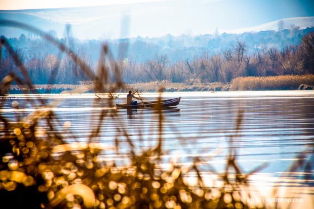 Kayaker In The Yakima Delta