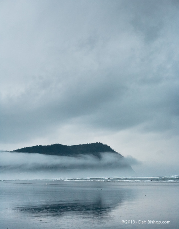 Misty Day On Oregon Coast